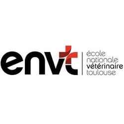 ENVT Océane Consulting Data Managament